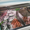 Vitrines peix
